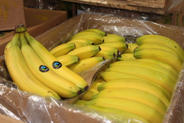 Bio Banane Fairtrade