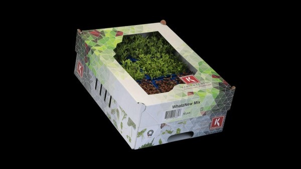 WhatZnew Mix Cress